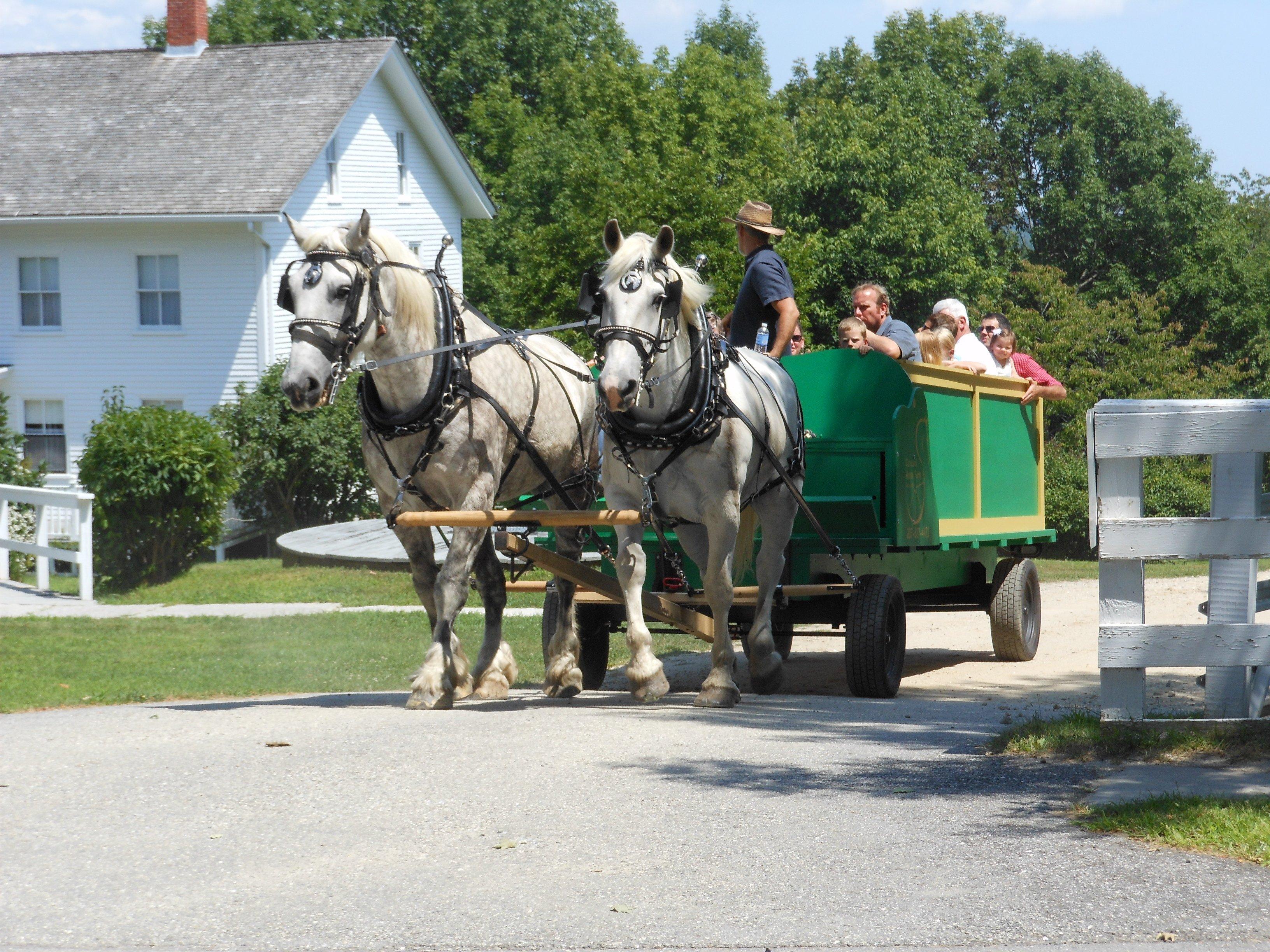 Wagon at Shaker Hill Open Farm Days