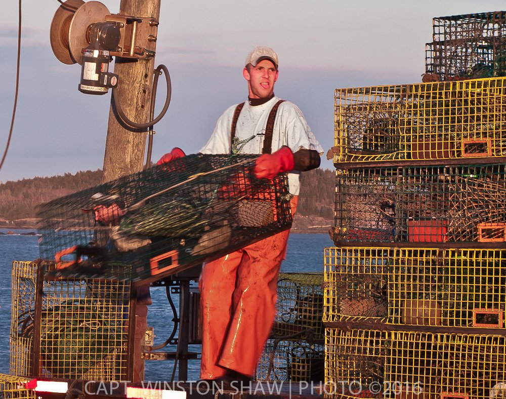 Lobsterman Loading Traps
