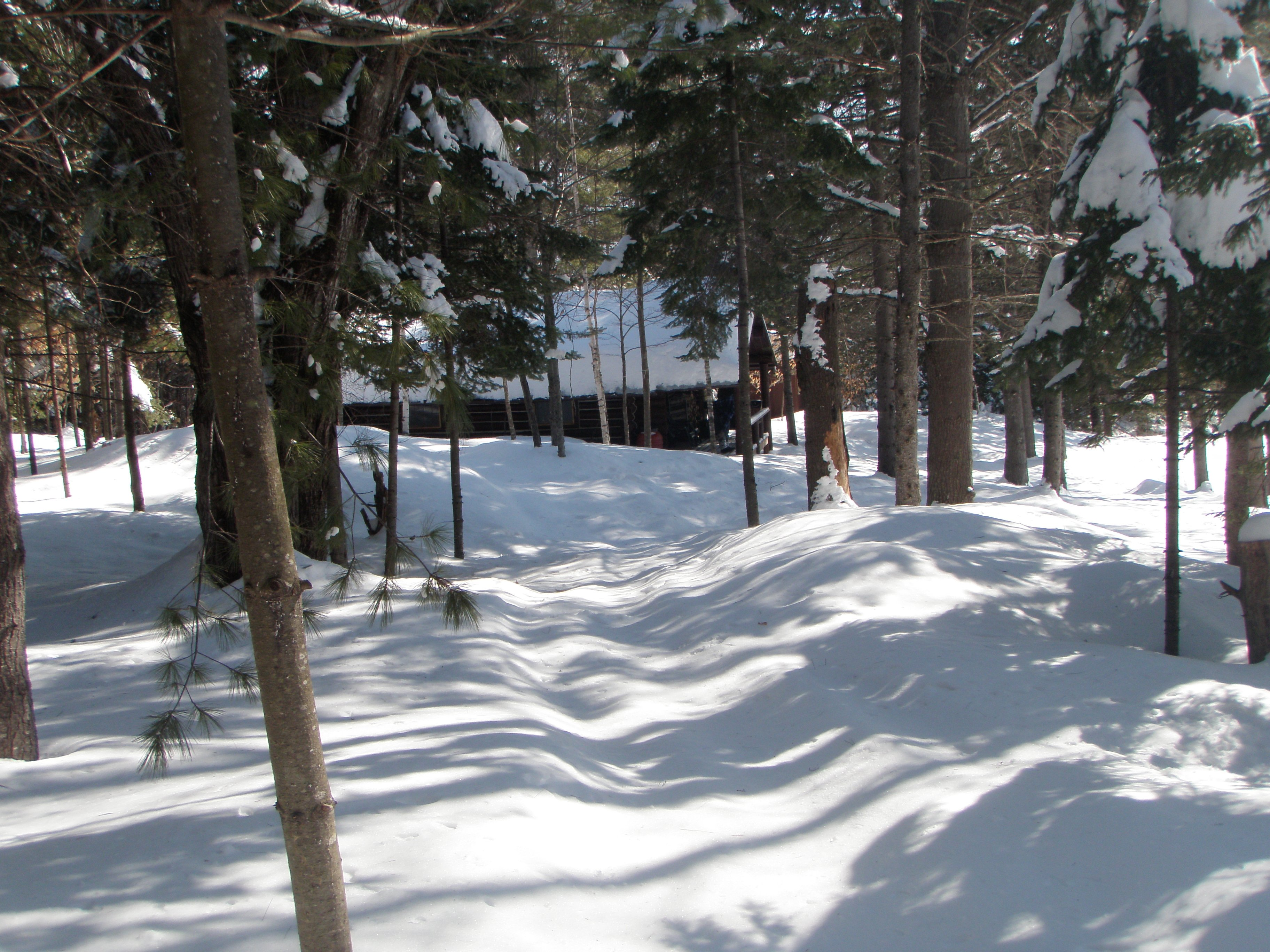 Seclusion in the snow