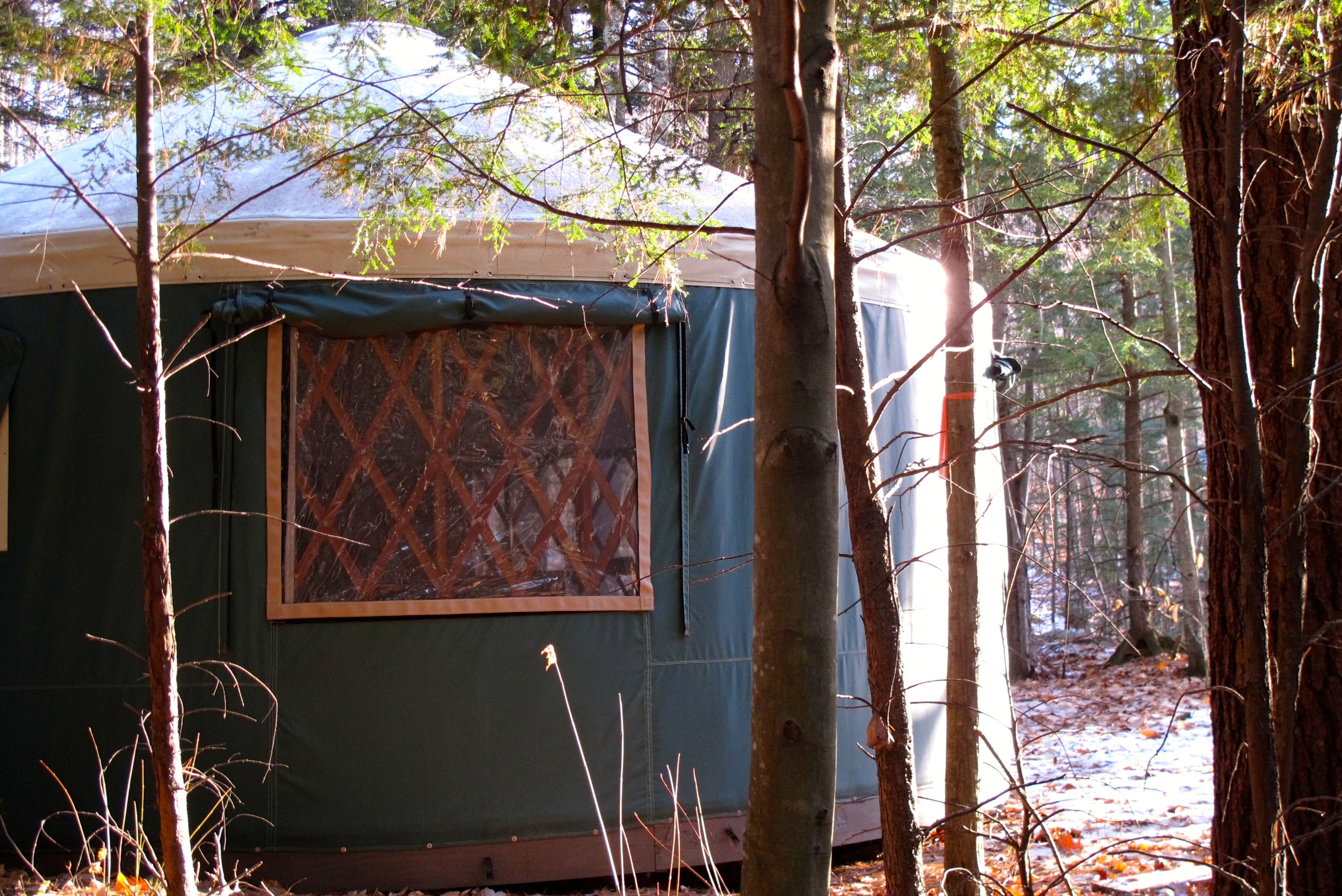 Mt. Brook Yurt tucked into the woods