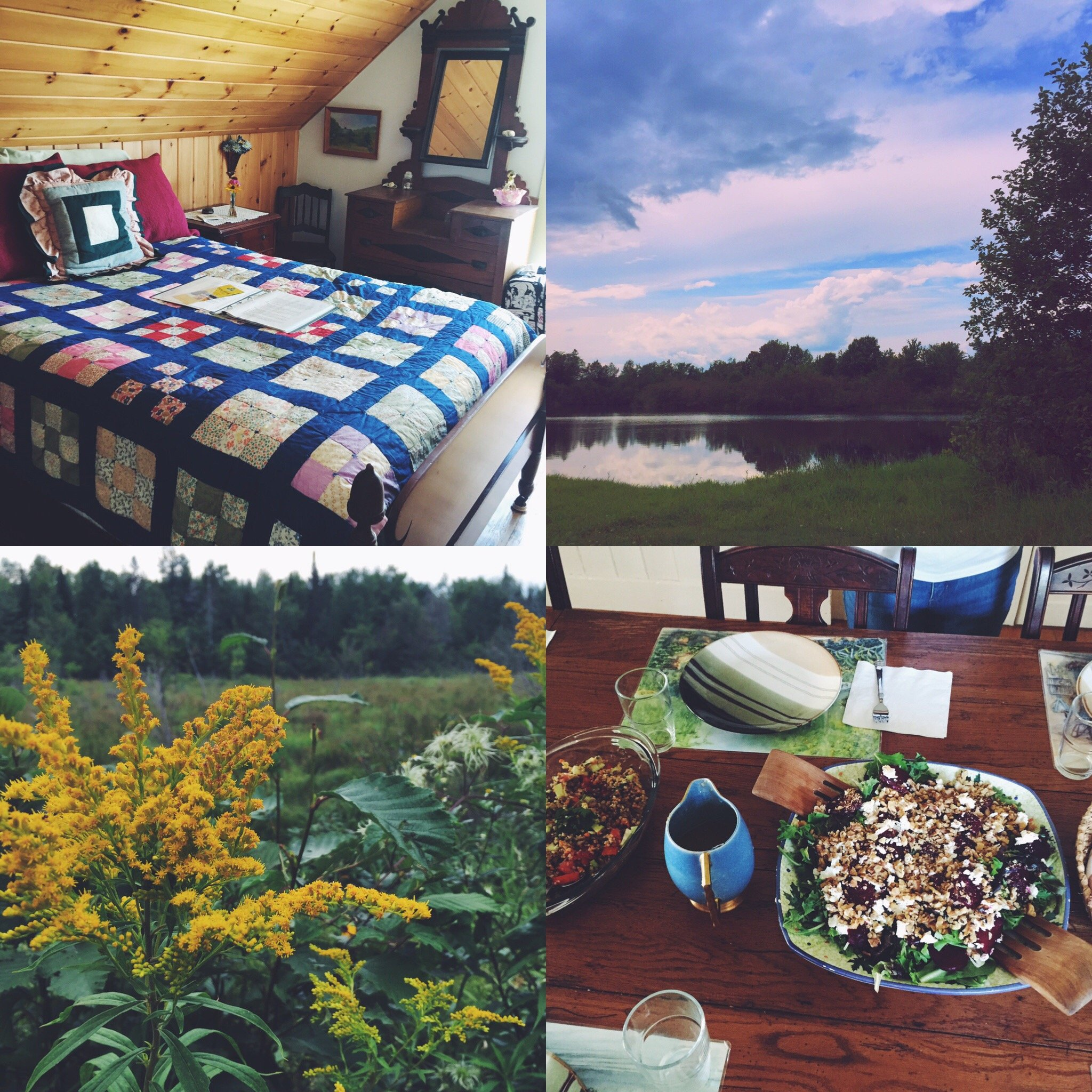local swimming hole, wild flowers and smaler guest room plus food!
