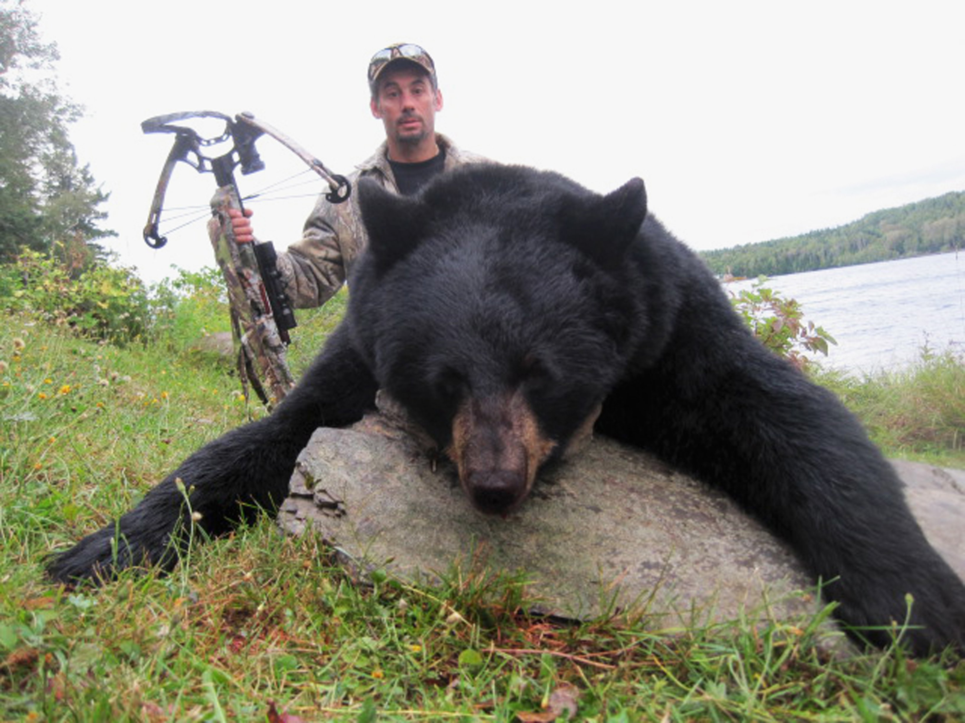 Maine state record sow with cross-bow weighing in at 325 lbs. by Al Anza (MA).