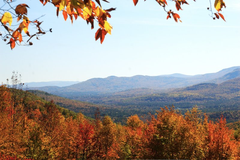 White Mountain National Forest during the Fall months.