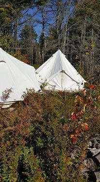 Bell Tent in field