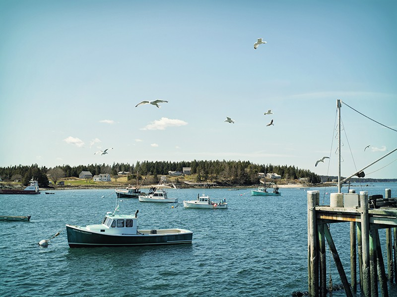 Top Spring Adventures in MidCoast Maine