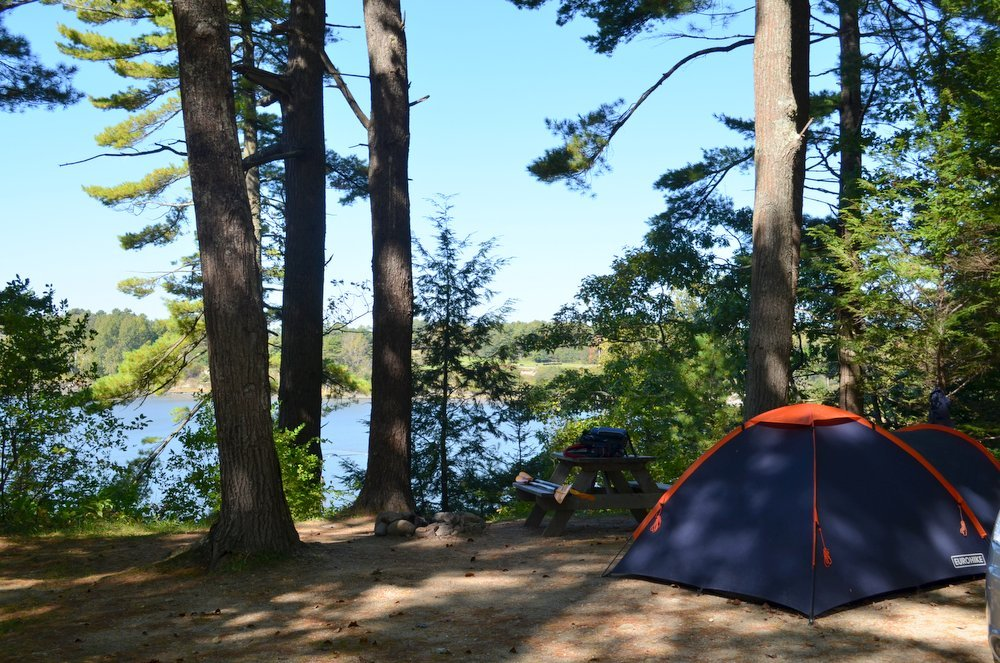 Oceanfront campsites at Wolfe's Neck Farm