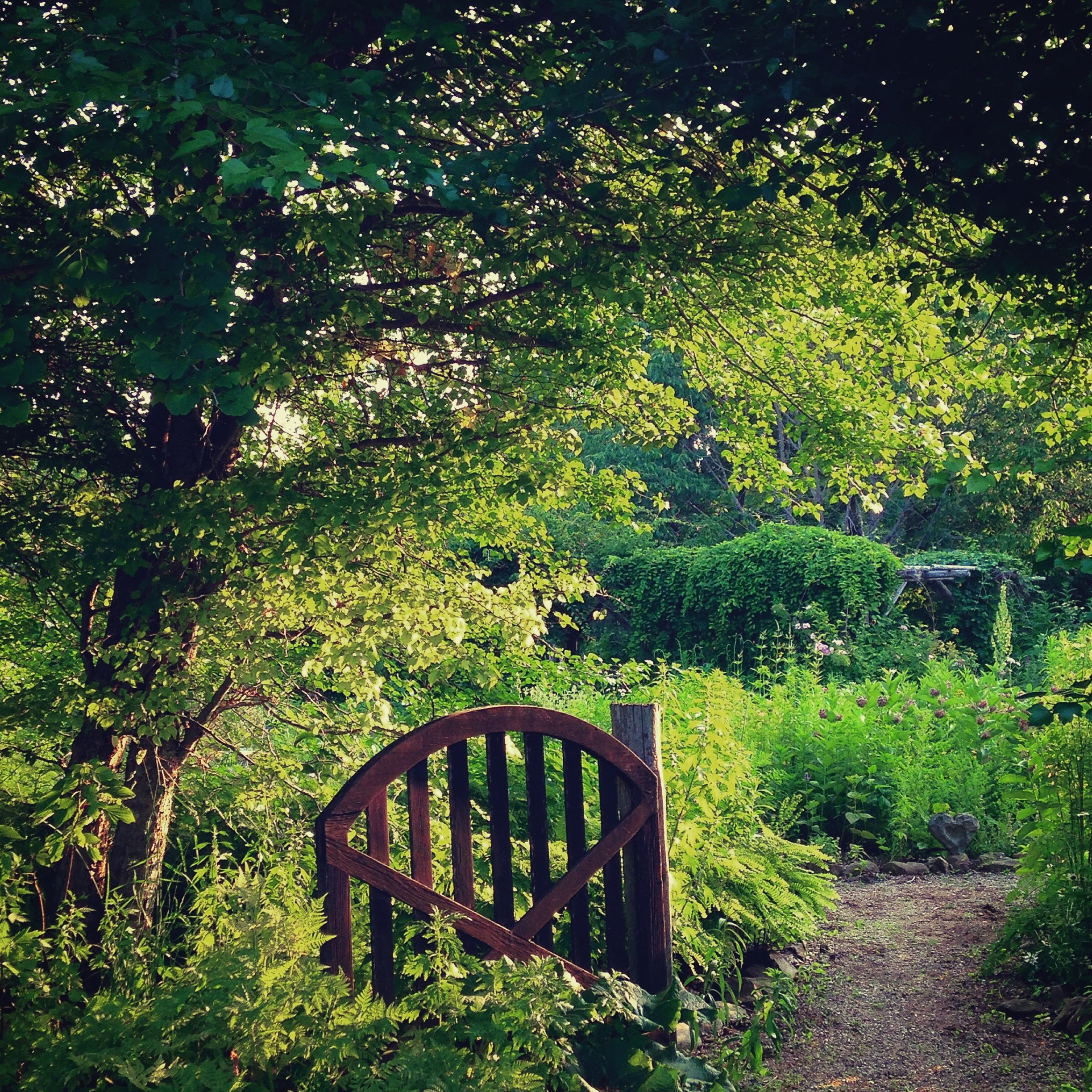 The entrance to the sanctuary garden at Avena Botanicals.