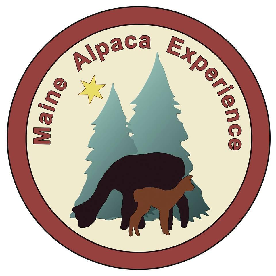 Northern Solstice Alpaca Farm - Maine Alpaca Experience