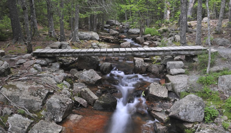 Bridge crossing a rocky stream in Acadia, Maine.