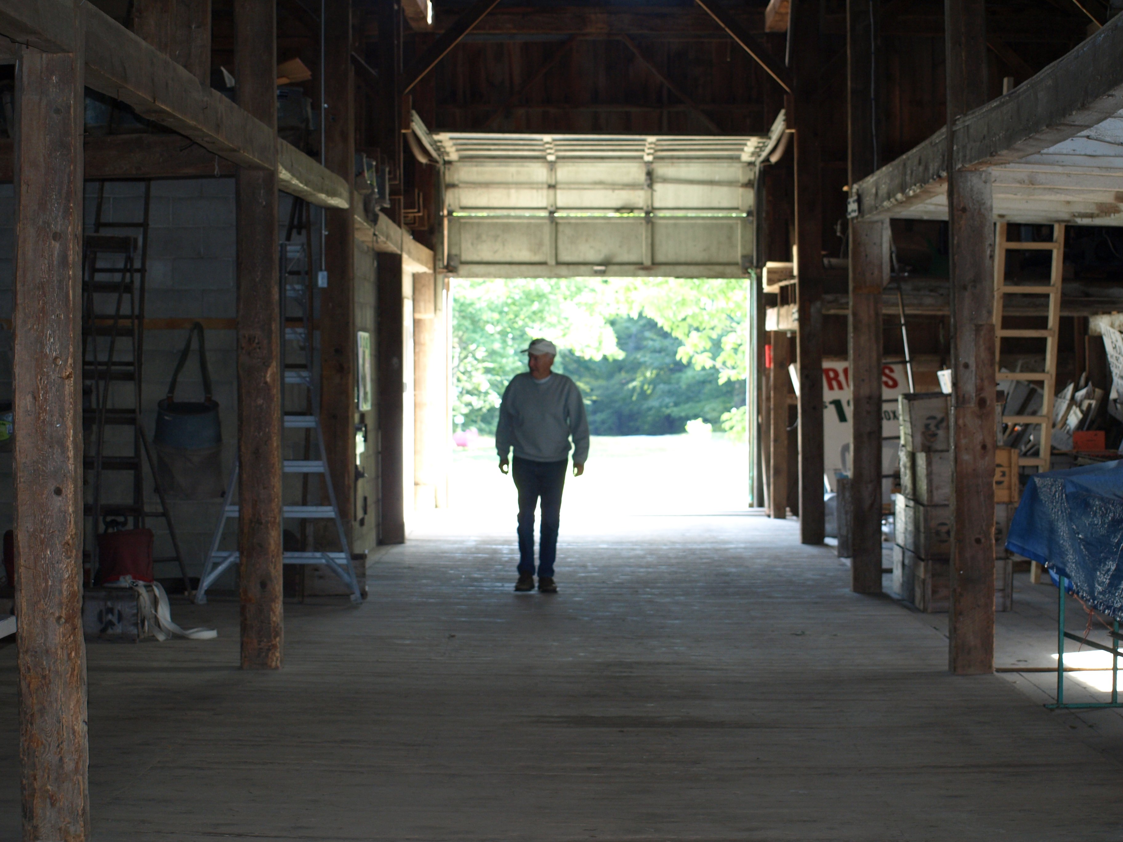 Mr. McDougal walking through the barn