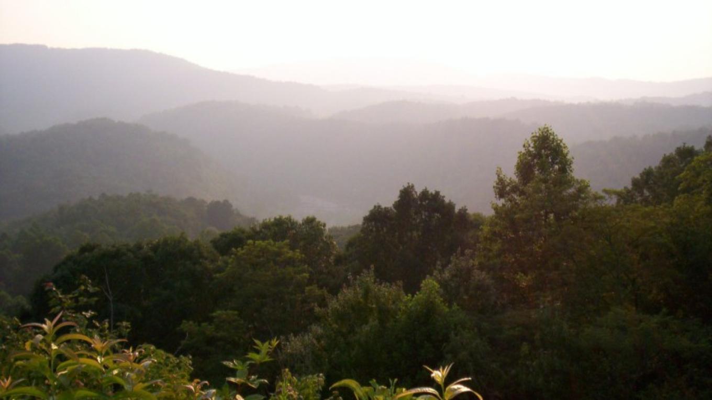 Boyd's Gap – Patricia Scott