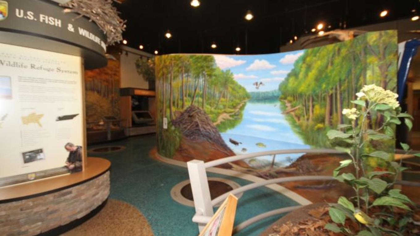Tennessee National Wildlife Visitor Center Exhibit Hall. – Kimi Fitzhugh