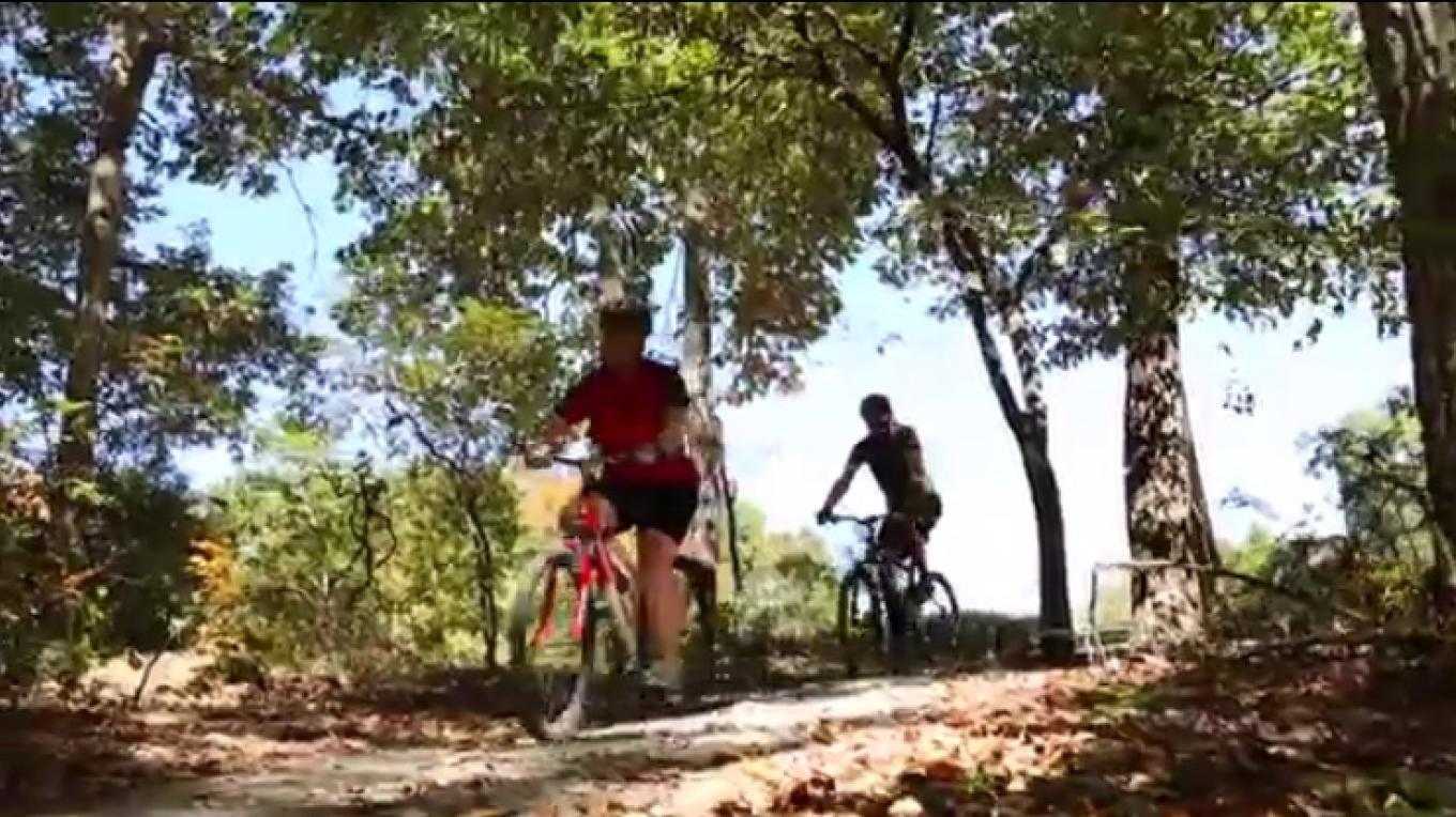 Mountain Biking Near Murray, Kentucky