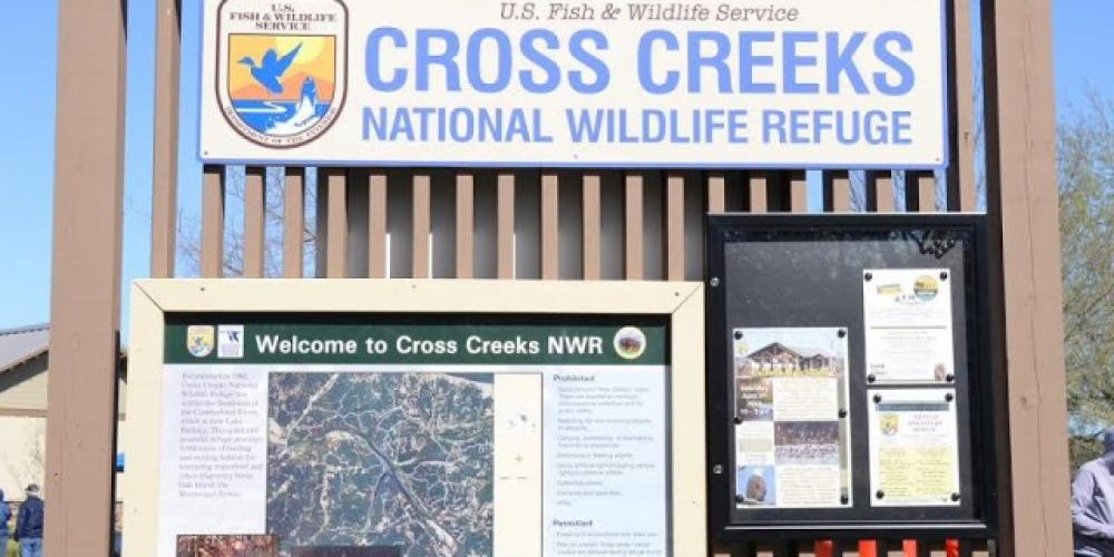Cross Creeks National Wildlife Refuge – Jean Owens