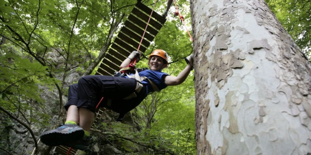 Down the Rabbit Hole on the Pigeon River Waterfall Canopy Tour – Wildwater Adventure Centers