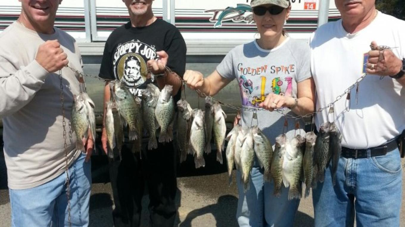 Nice catch of crappie!