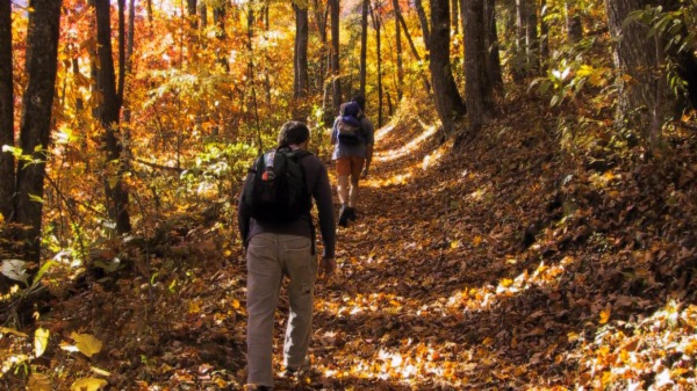 Join NOC for a guided hike in the Smokies, and enjoy favorite local routes, historical Smokies landscapes and incredible views.