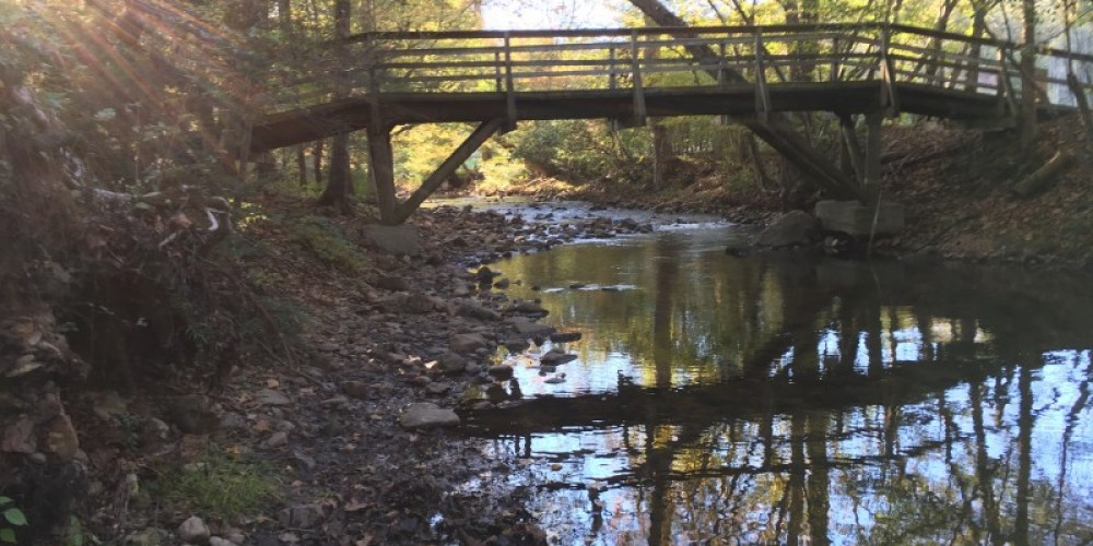 Crosswalk over Hesse Creek leading to the hiking trails and beyond. – Kenny Markanich