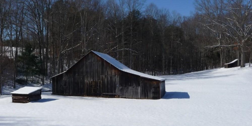 Winter snow scene. – Larry Lane