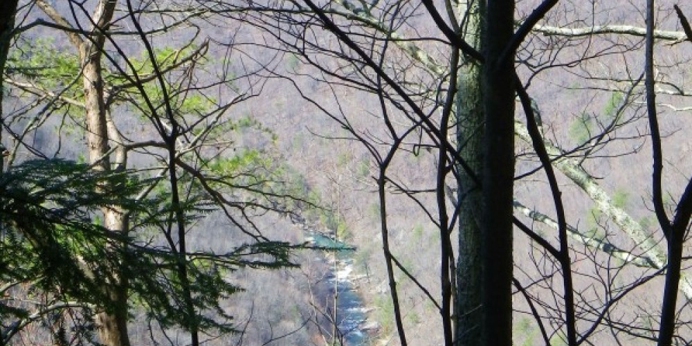 View of the Gorge from on top of Mowbray Mountain – Erin Ouzts