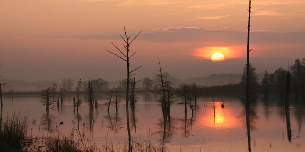 Sunset on the refuge. – Clayton Ferrell