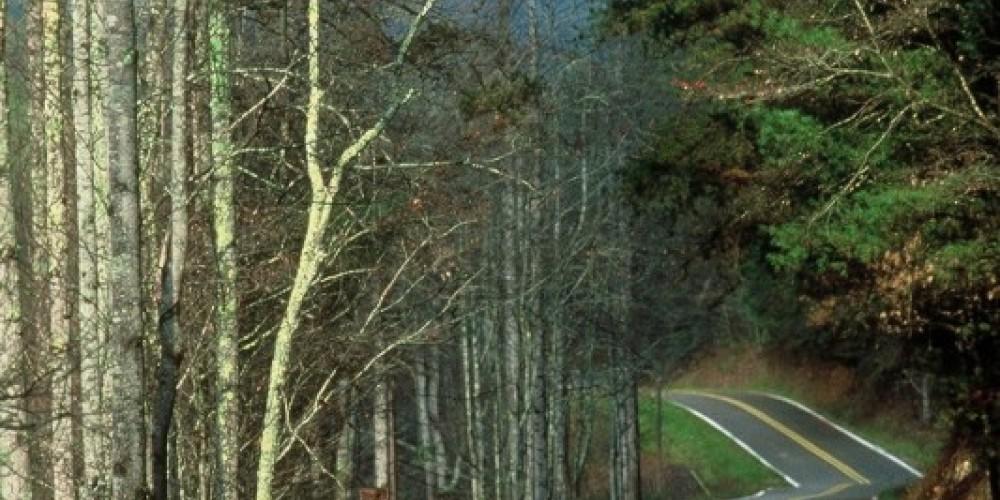 Scenic Drives – Jim Caldwell