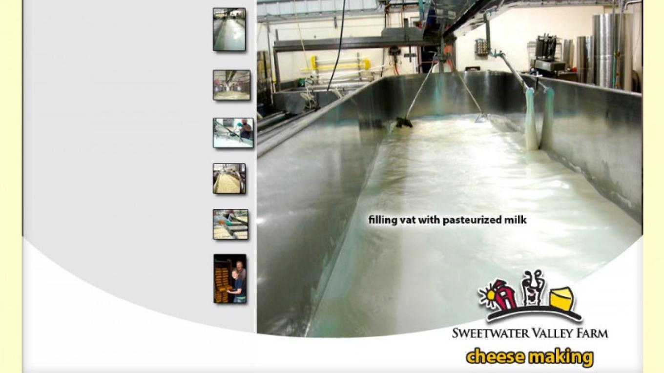Filling vat with pasteurized milk