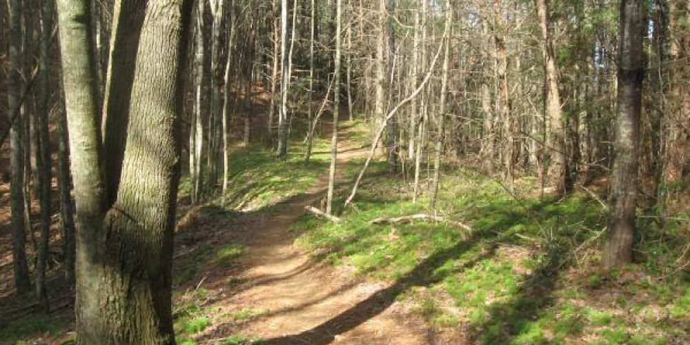 Pinhoti Trail – Google Images