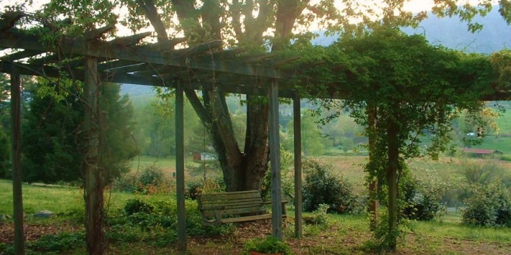 Garden swing with Chilhowee Mt in background – Carol Hawkins