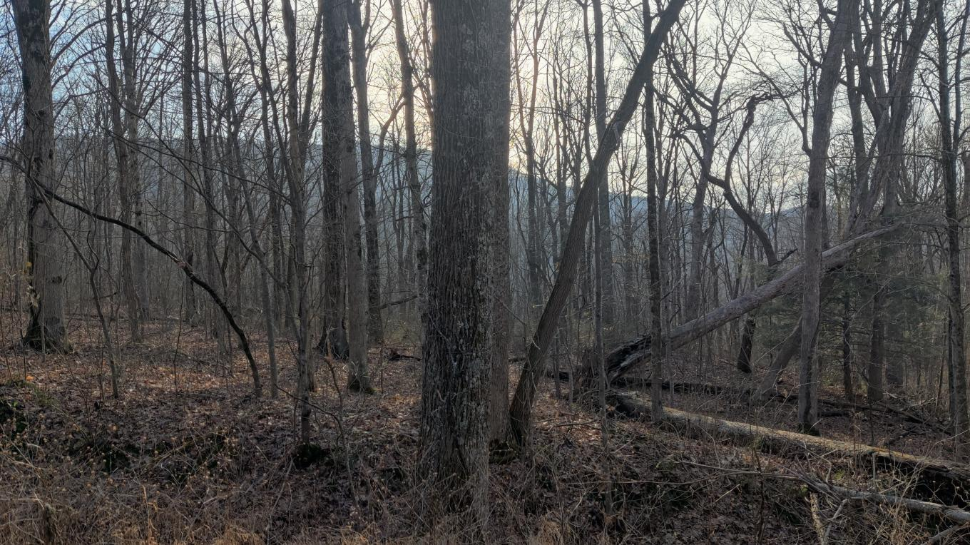 Black Mountain in Cumberland County offers sweeping views in winter.