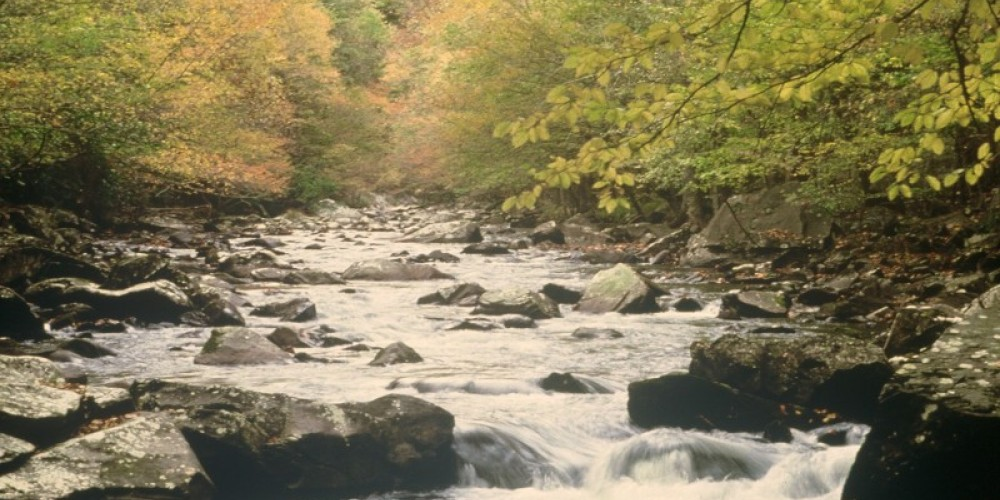 Little River Fall Scene – Townsend Visitors Center