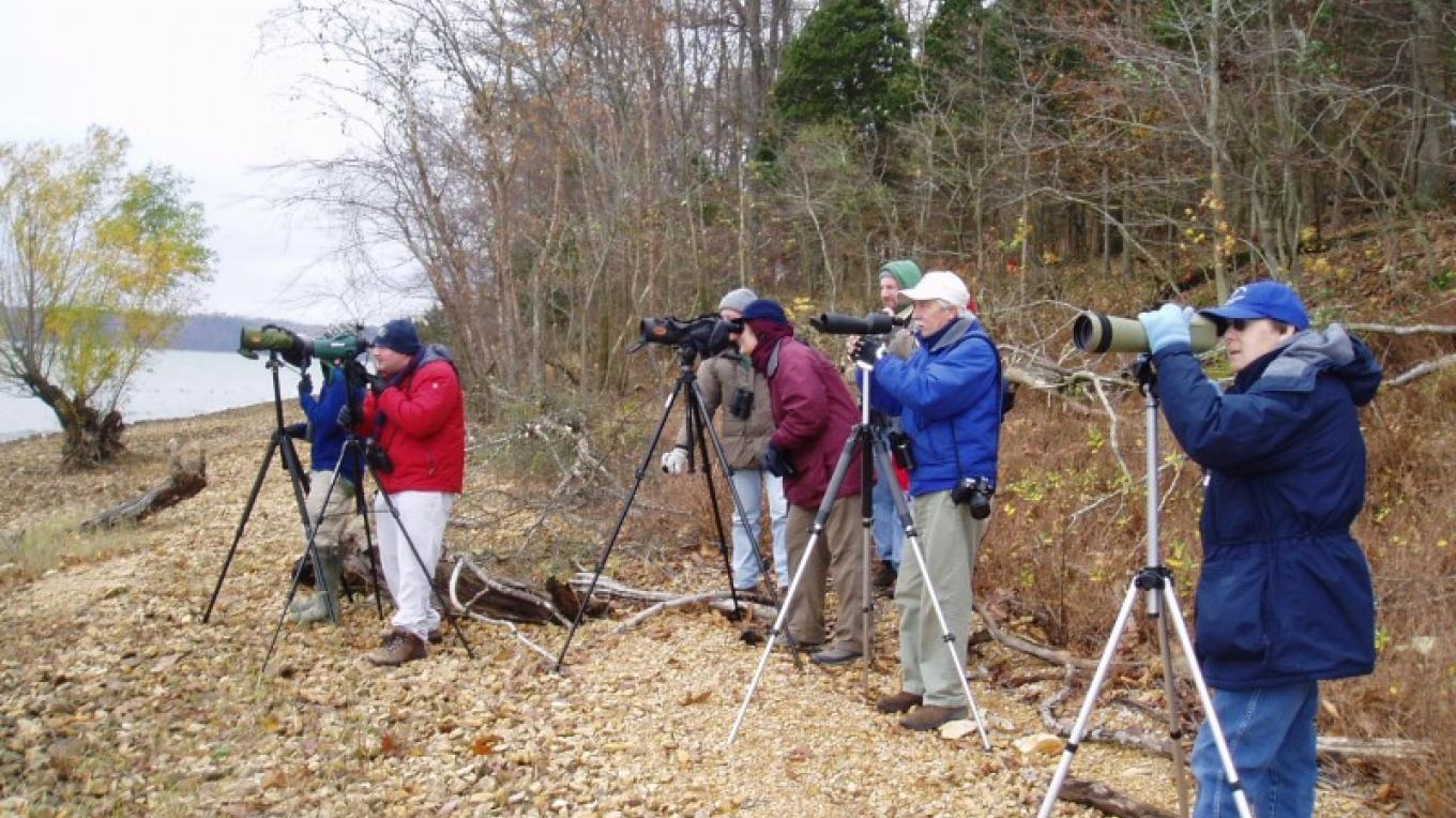 Birding on Pace Point in the Tennessee National Wildlife Refuge, one of the top ten birding locations in the state. – Joan Howe