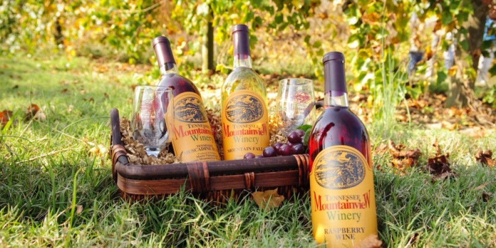 Tennessee Mountainview Winery selections are made on location from fruit grown at the family-owned vineyard. – Tennessee State Photography
