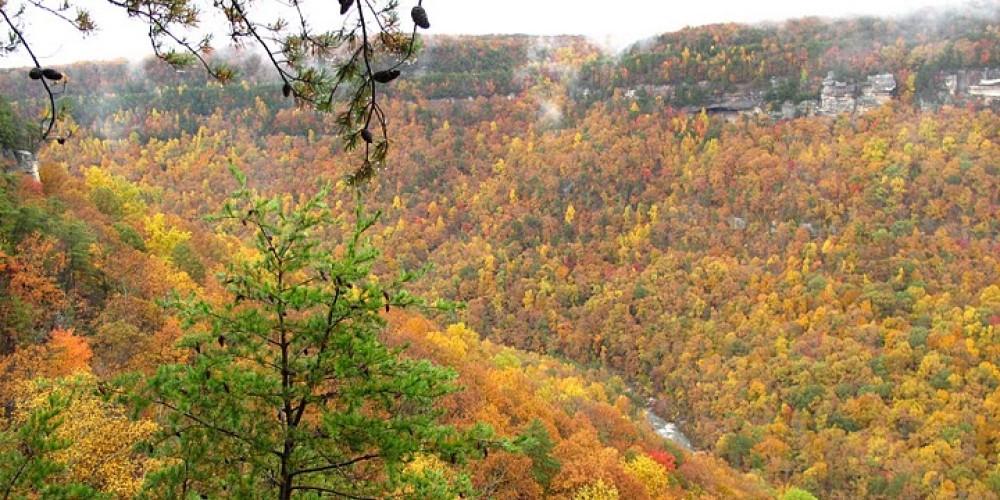 Pocket Wilderness Overlook on the Flipper Bend Trail – Earl Helmer
