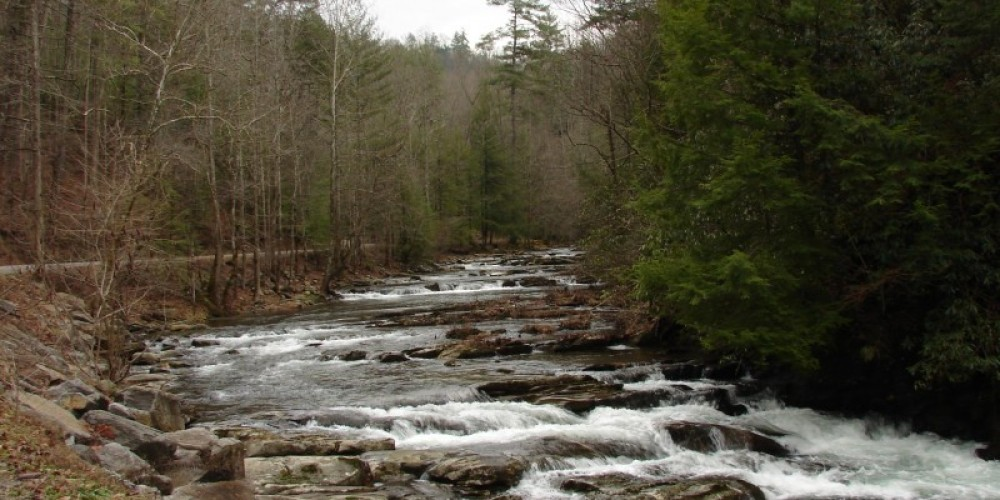 Citico Creek – Delores Sowders