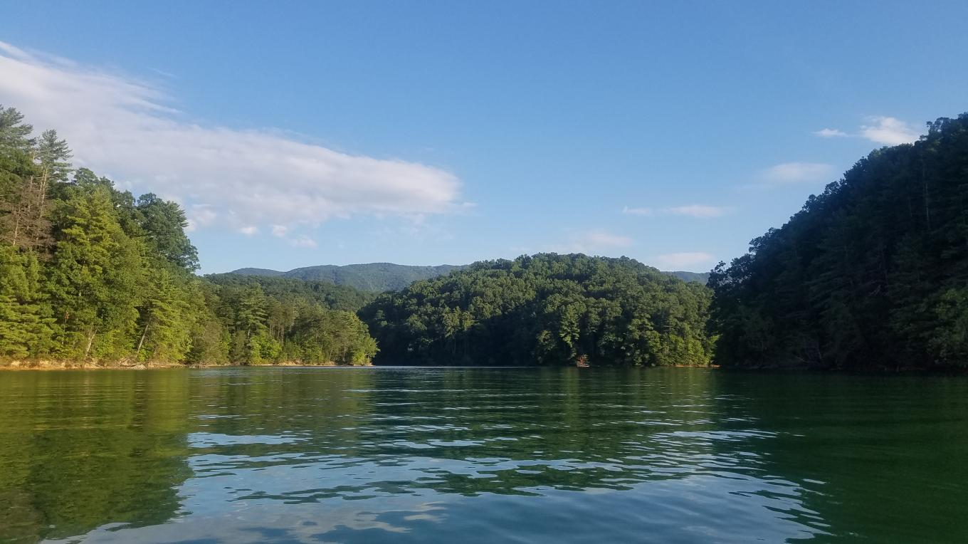 Finding a place of solitude in your canoe or kayak on South Holston Lake is just a few paddle-strokes away.