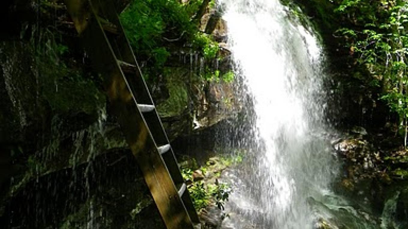 Ladder down the waterfall along the Cumberland Trail – Erin Ouzts