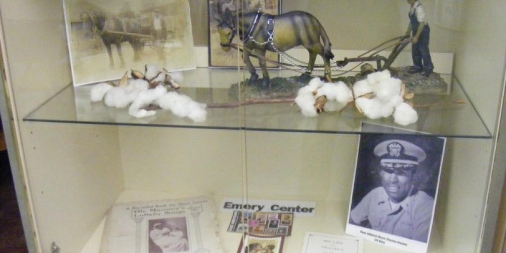 Emery Center Display Case – Dionna Reynolds
