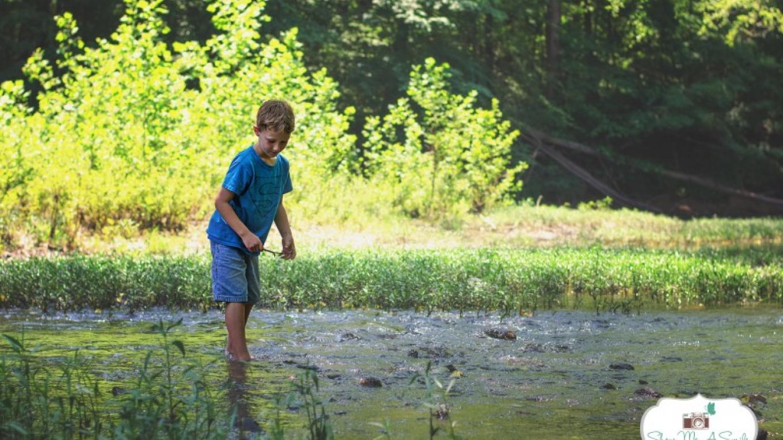 South Chickamauga Creek at Audubon Acres – Nicole Manning