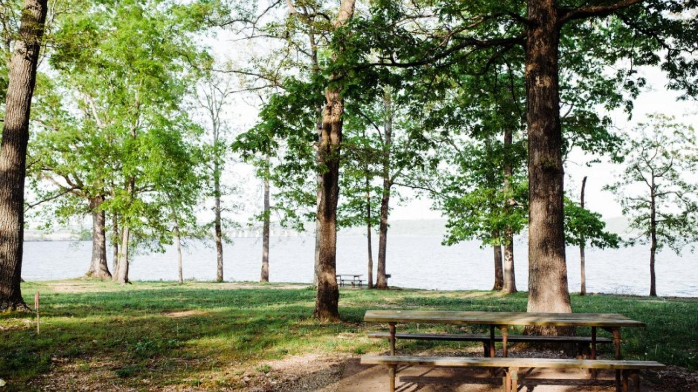 Paris Landing State Park – Cari Griffith