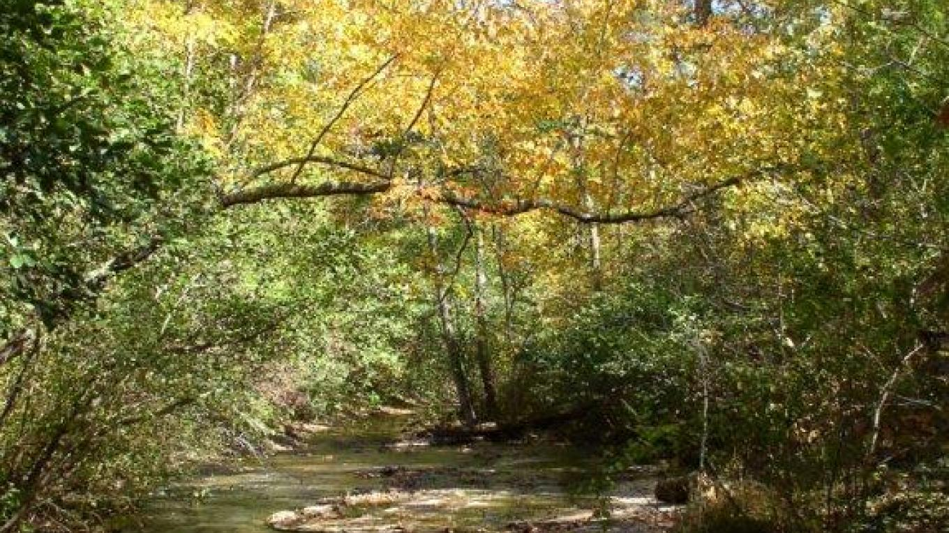 Trails – Courtesy of Tishomingo Tourism