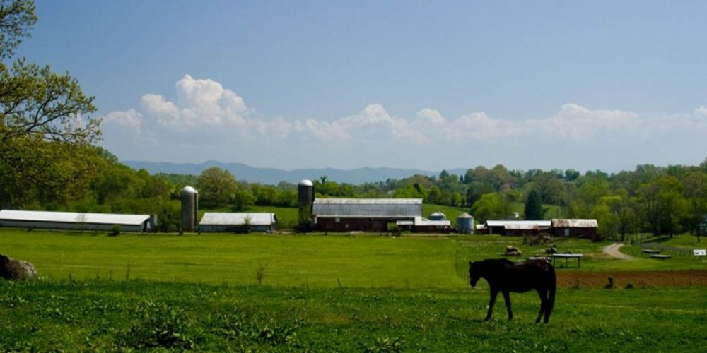 Image of Blount County farm - Property has a conservation easement with Foothills. – Mark Lewis
