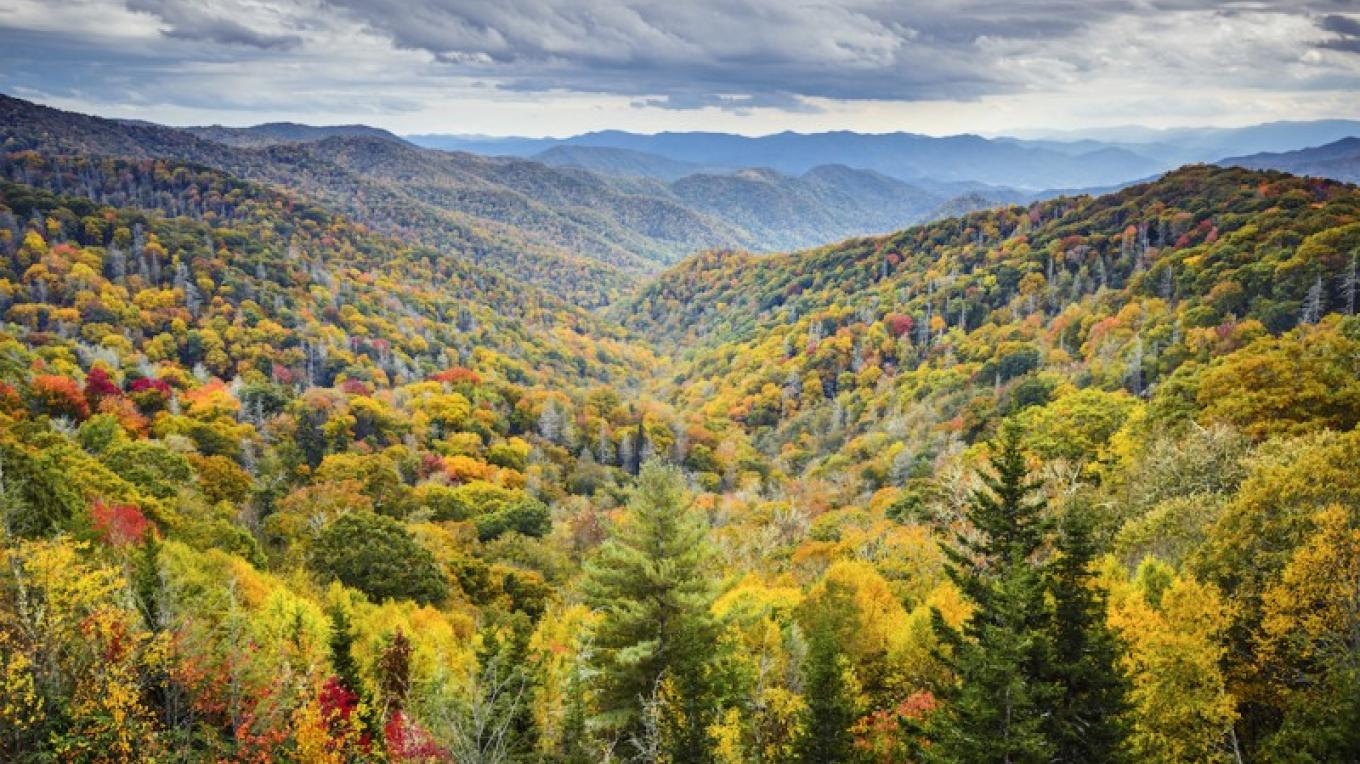 Autumn at Newfound Gap in Great Smoky Mountains National Park – Sean Pavone