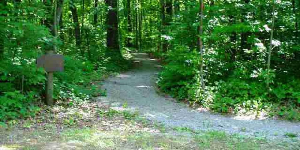 Hiking Trail – Lee Greene