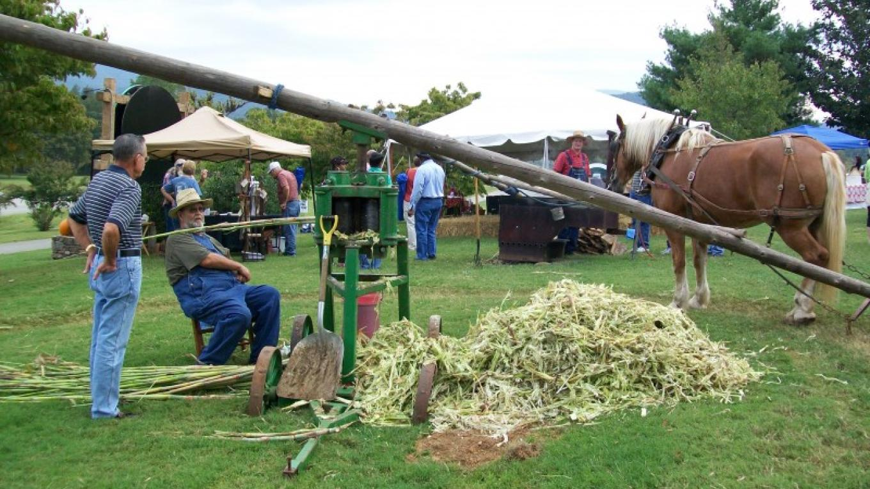 Sorghum molasses mill – Townsend Visitors Center