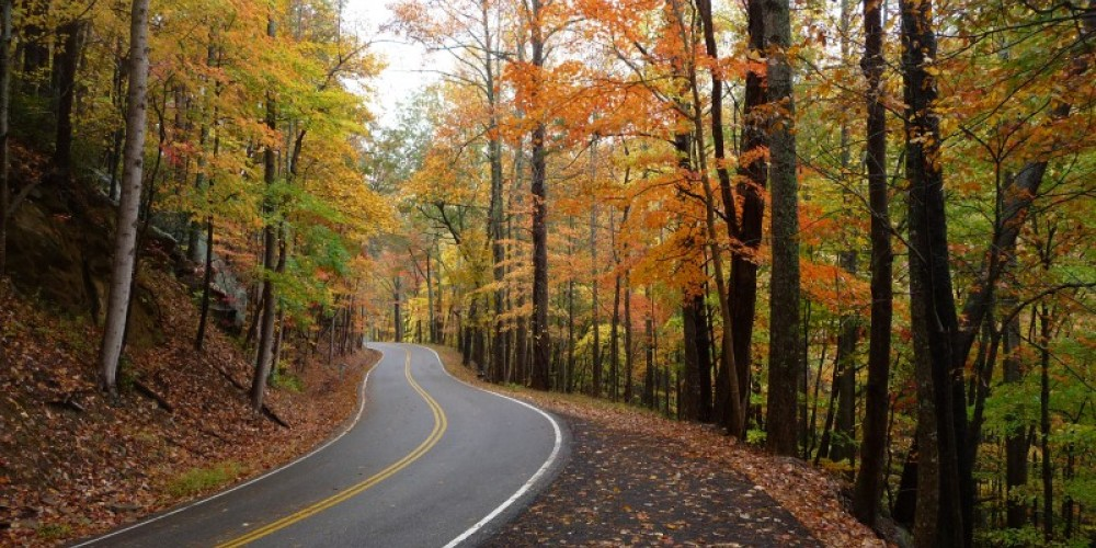 Tail of the Dragon (Hwy 129) – Larry Lane