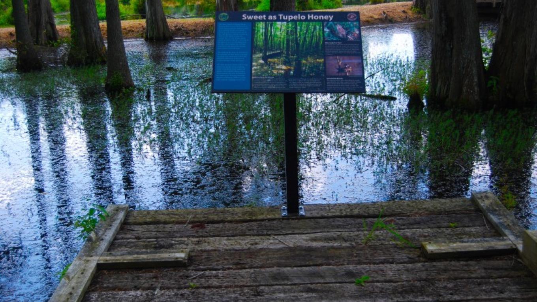 Cypress Cove Farm – Courtesy of AMLA