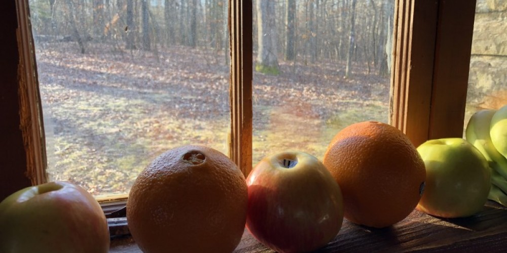 Winter view from rock cabin. – Susan Jones