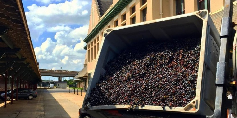 Blue Slip Winery's First Grape Crush