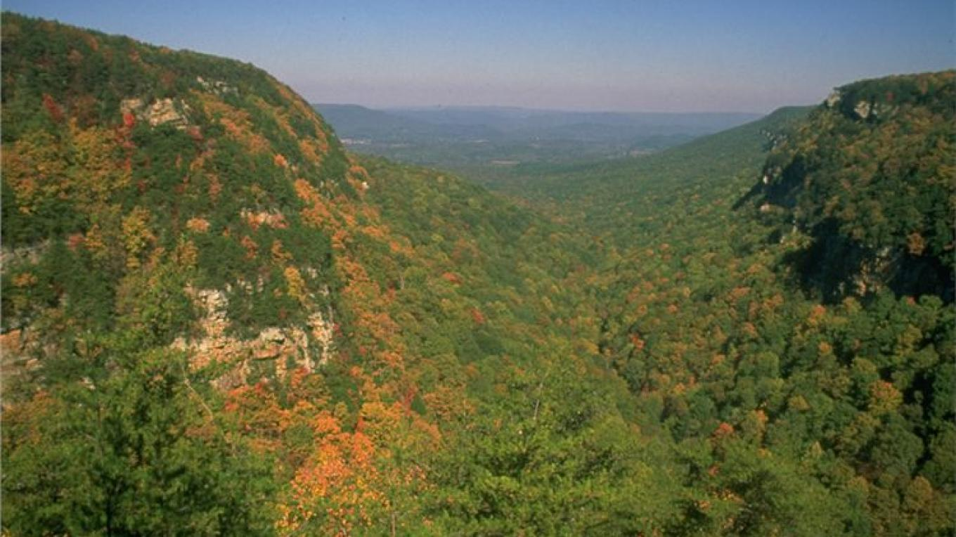 Cloudland Canyon State Park gorge, Rising Fawn, GA – Georgia State Parks - GA Dept. of Natural Resources